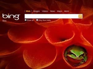 img_155262_bing-logo_450x360 Microsoft's Bing gains share from Google